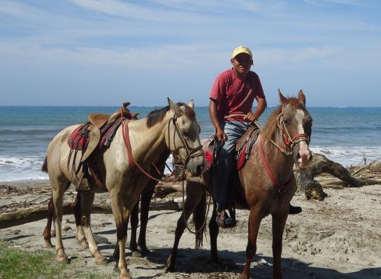 horses wranglers horseback riding costa rica