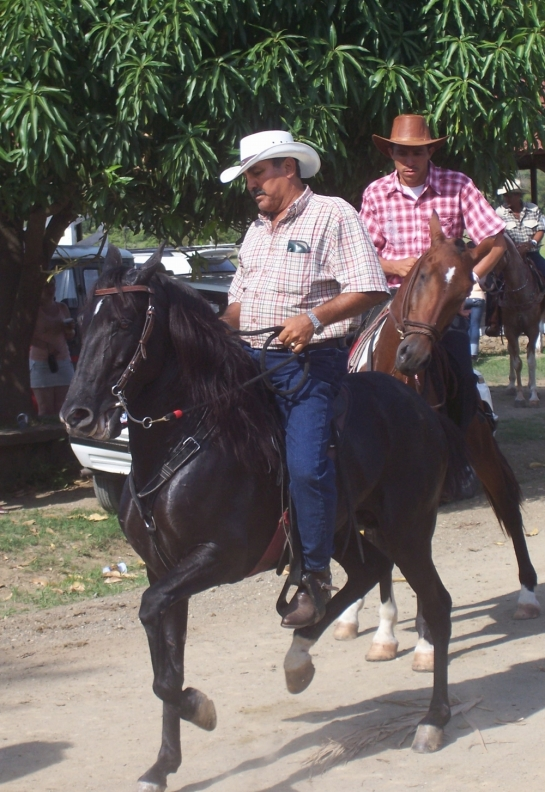 horsebackriding in costa rica