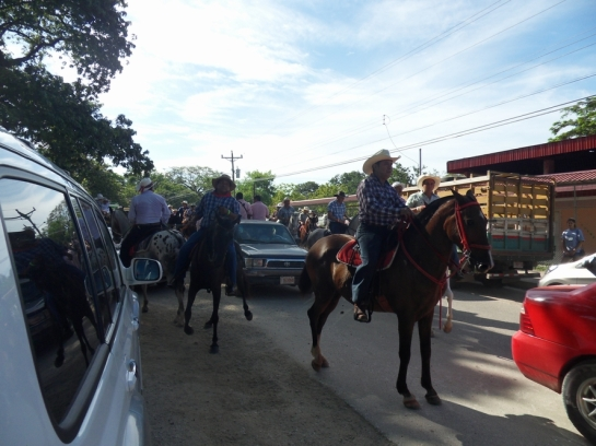 It's a horse parade.