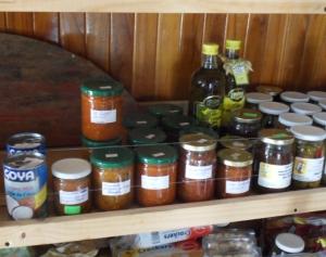 handmade salsa