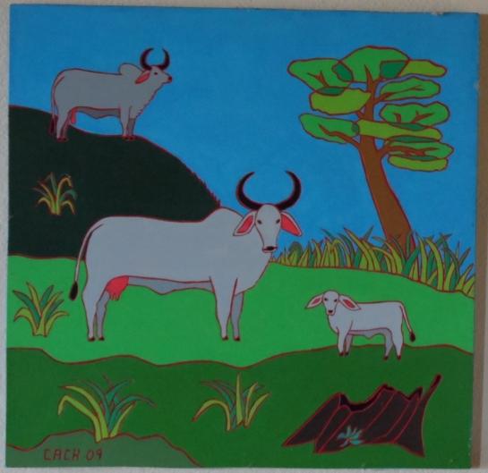 b- cows 23