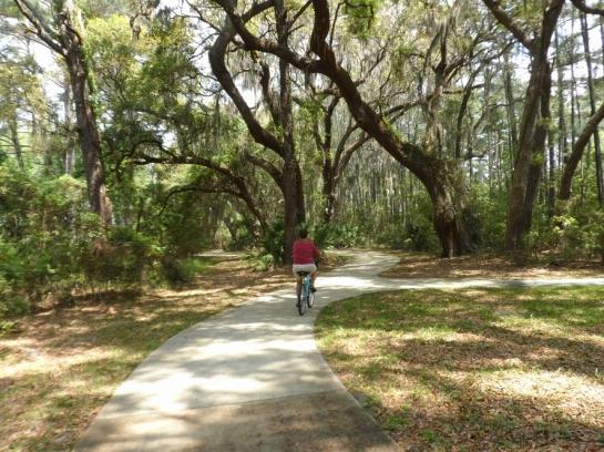 bicycling jekyl island