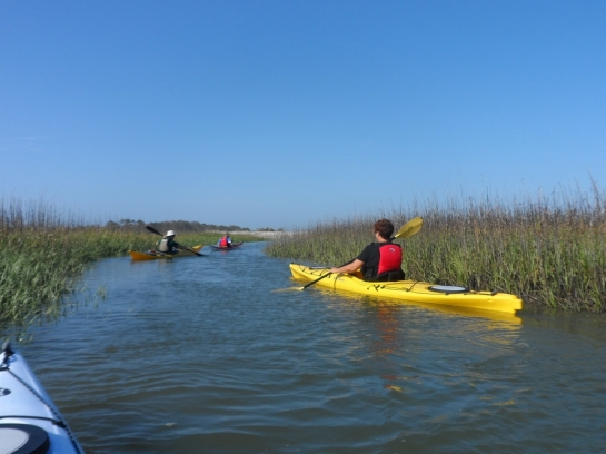kayaking from tybee island