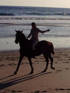 horse on buena vista beach
