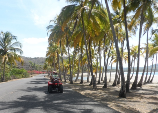 We started out along Playa Carrillo, just 4 km from Casa Mango and Casa Papaya.